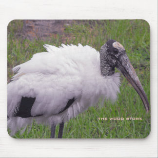A Wood Stork Mouse Pad