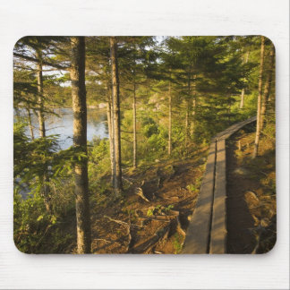 A wooden walkway in Acadia National Park Maine Mouse Pad