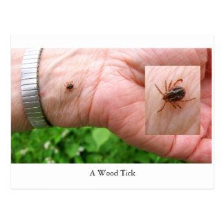A woodtick, wood tick and hand postcard, bugs postcard