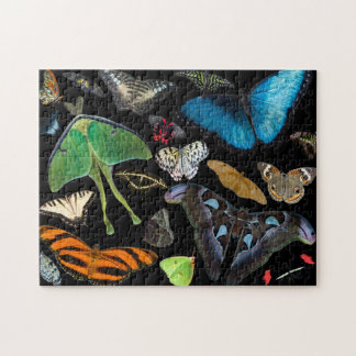 A World of Butterflies and Moths. Jigsaw Puzzle