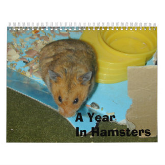 A Year in Hamsters 2010 Wall Calendars