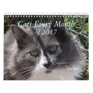 A Year of Cats 2017 - customize to any year Wall Calendar