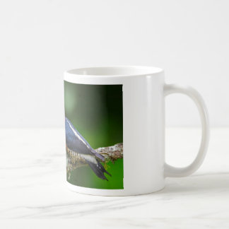 A Yellow Fronted Woodpecker in Brazil Coffee Mug