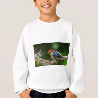 A Yellow Fronted Woodpecker in Brazil Sweatshirt