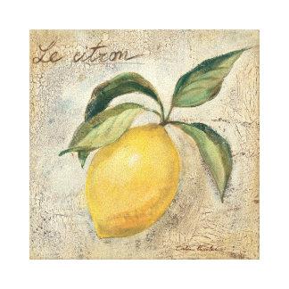 A Yellow Lemon Fruit Canvas Print