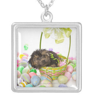A Yorkie-poo puppy encountering an Easter basket Silver Plated Necklace