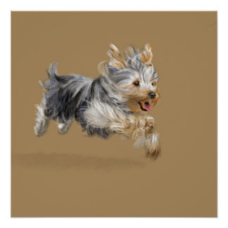 """A Yorkshire Terrier Called """"Joy"""" Poster"""