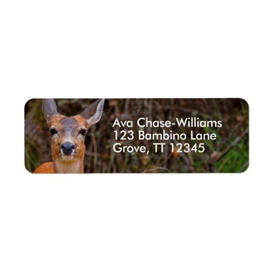 A Young Black-Tailed Deer Smiles Return Address Label