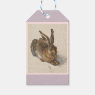 A Young Hare Pack Of Gift Tags