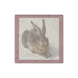 A Young Hare Stone Magnets