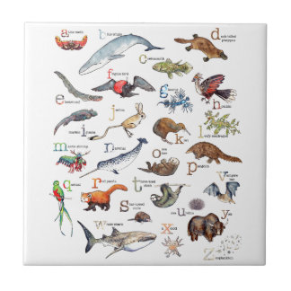 A-Z of amazing animals Tile