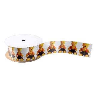 AA511A-Teddy-Yolo-light-Pattern-no-BG-cut-transpar Satin Ribbon