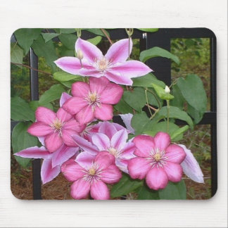 AA- Pink clematis flower mousepad