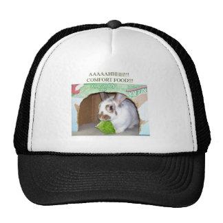 AAAAHHHH Comfort Food Mesh Hat