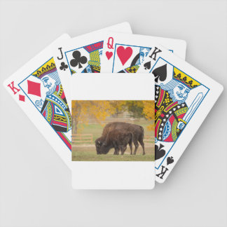 AAutumn Buffaloes Cow and Calf Bicycle Playing Cards