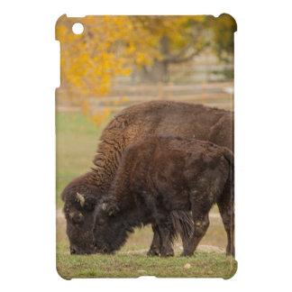 AAutumn Buffaloes Cow and Calf iPad Mini Cover