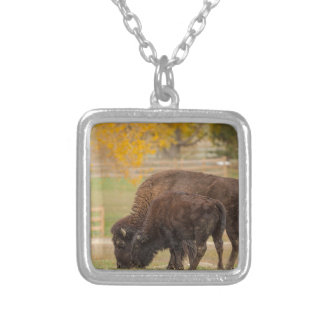 AAutumn Buffaloes Cow and Calf Silver Plated Necklace