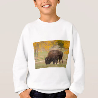 AAutumn Buffaloes Cow and Calf Sweatshirt