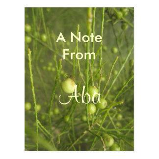 Aba Postcard