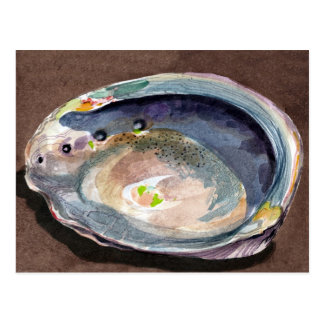 Abalone Shell Postcard