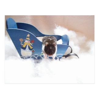 abandon sled!! postcard