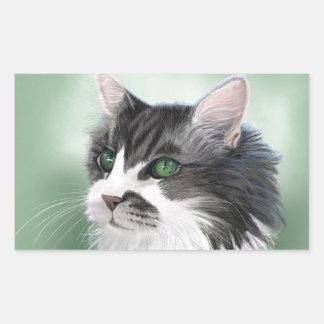 Abbie domestic long hair cat, digital portrait