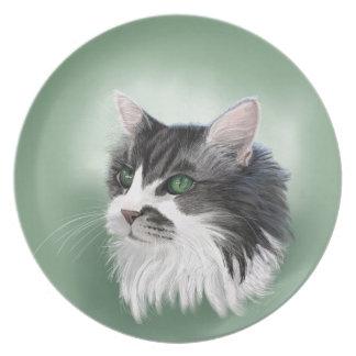Abbie domestic long hair cat, digital portrait dinner plates