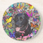 Abby in Butterflies - Black Lab Dog Coaster