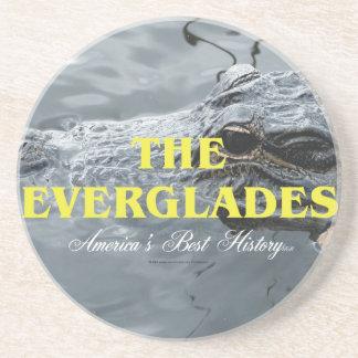 ABH Everglades Coaster
