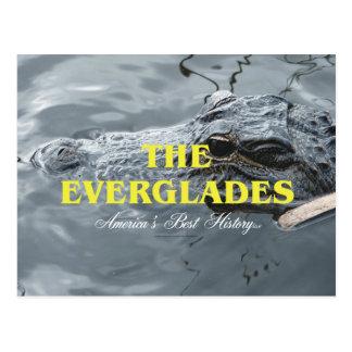 ABH Everglades Postcard