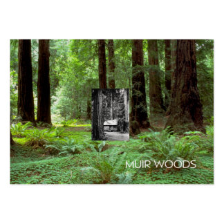 ABH Muir Woods Large Business Card