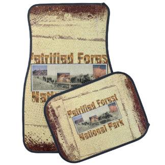 ABH Petrified Forest Car Mat