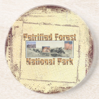 ABH Petrified Forest Coaster