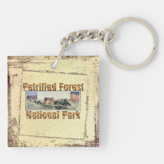 ABH Petrified Forest Keychain