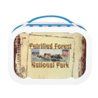 ABH Petrified Forest Lunch Box