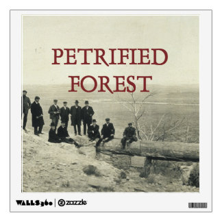 ABH Petrified Forest Wall Decal