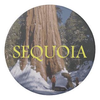 ABH Sequoia Eraser