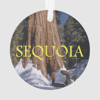 ABH Sequoia Ornament