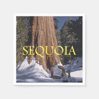 ABH Sequoia Paper Napkin