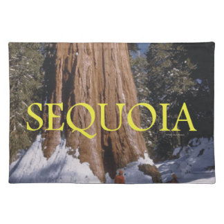 ABH Sequoia Placemat