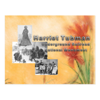 ABH Tubman National Monument Postcard