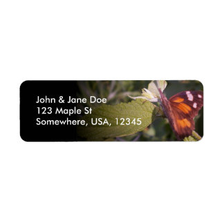 About to Fly Return Address Label