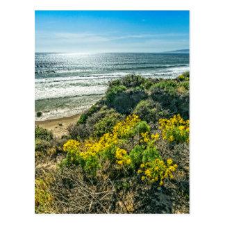 Above the Cliffs at Jalama Beach Postcard