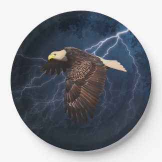 ABOVE THE STORM 9 INCH PAPER PLATE