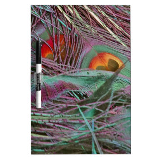 Abstract 70s Peafowl Dry Erase White Board