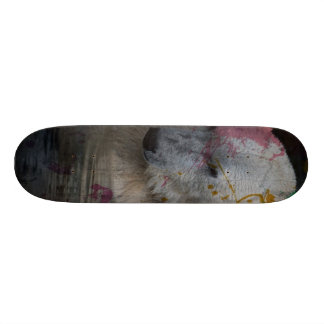 abstract Animal - Polar Bear Skateboard Deck