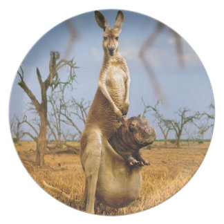 Abstract Animals Kangaroo Baby Shock Plate