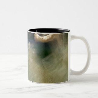 Abstract Artful Nature Fish Tank Two-Tone Coffee Mug