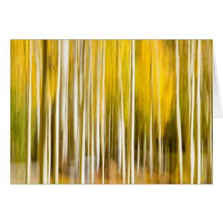 Abstract aspens card