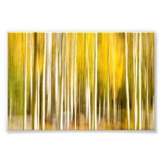 Abstract Aspen's Photo Print